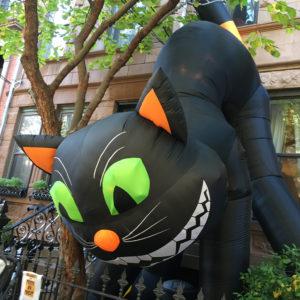 Halloween Giant Cat
