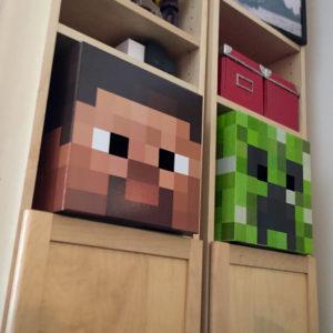 Steve and Creeper